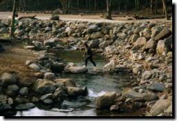 岩魚が釣れます