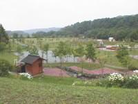 公園の一部がキャンプ場