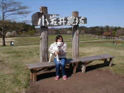 岩手県 小岩井農場