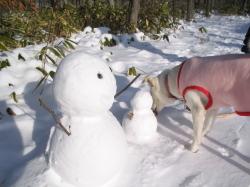 雪だるまとゆう