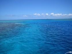 海の透明度がすごい