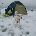 桧原湖 氷上わかさぎ釣り